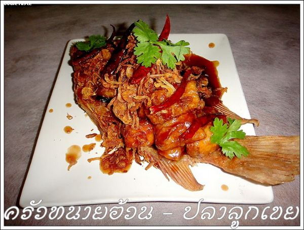 ปลาลูกเขย (Deep fried Tilpia with tamarind sauce)